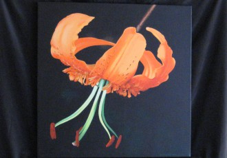 Lily $300.00  (20 x 20)