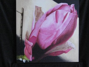 painting of magnolia flower
