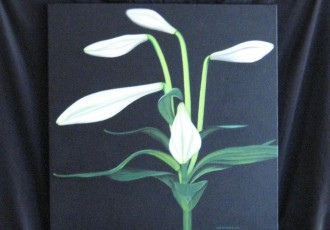Lily $300.00 (20 x 20 )